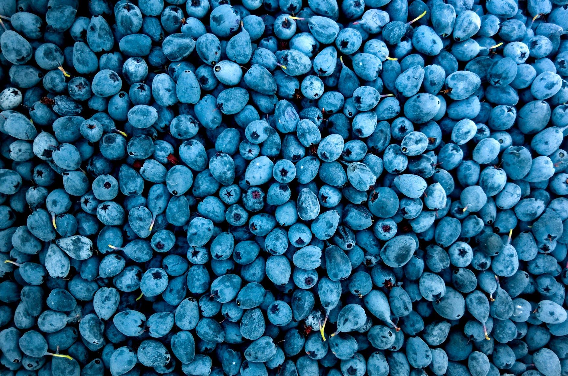 Blueberries to prevent heart attacks