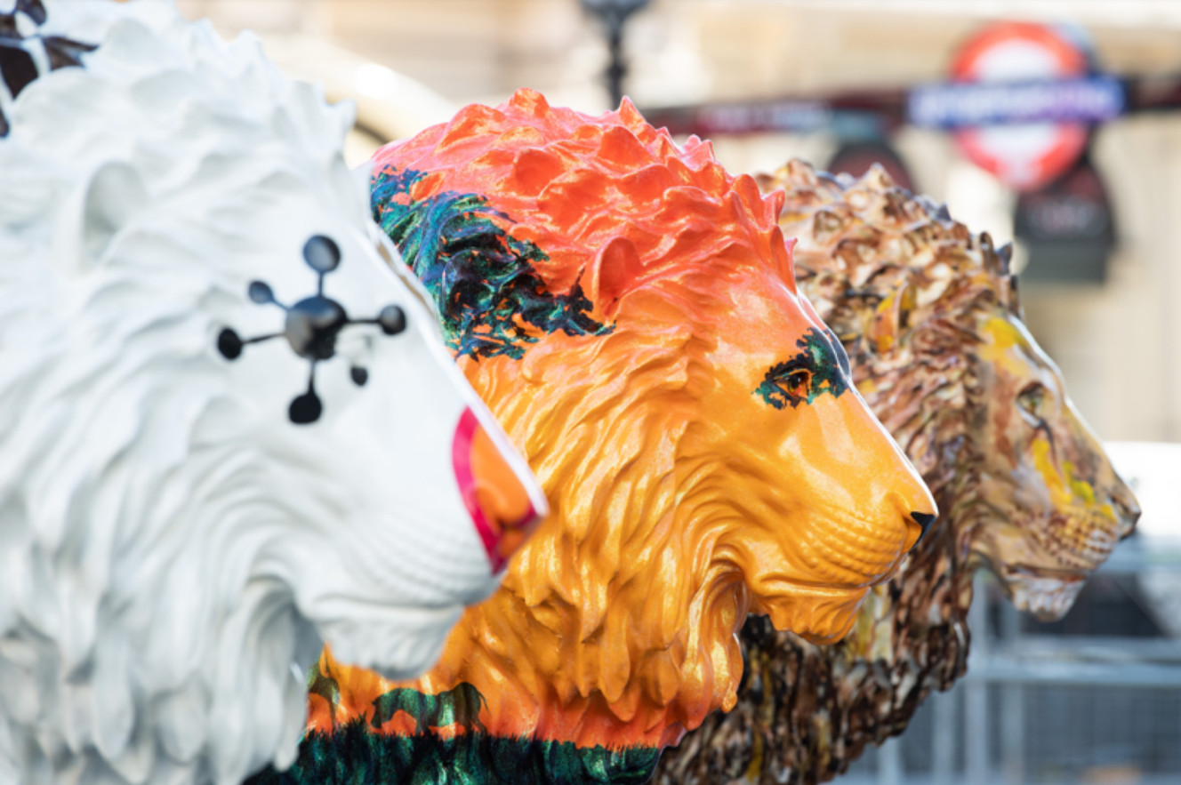 A pride of lions with celebrity credentials has taken centre stage across london